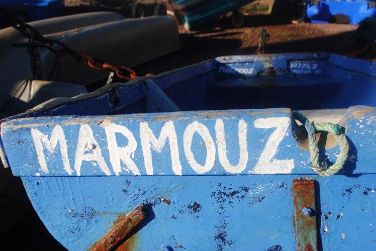 Route du Rhum 2014 Saint Malo 7  (5)