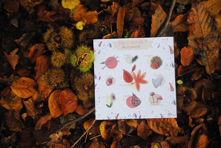 BINGO NATURE - Automne 2- MaDe en couleur le blog ©2015