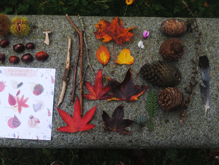 BINGO NATURE - Automne 9- MaDe en couleur le blog ©2015